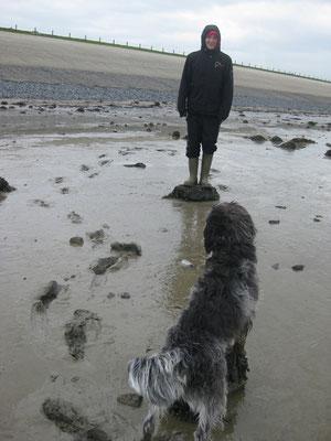Wattwanderung in Holland - 2012