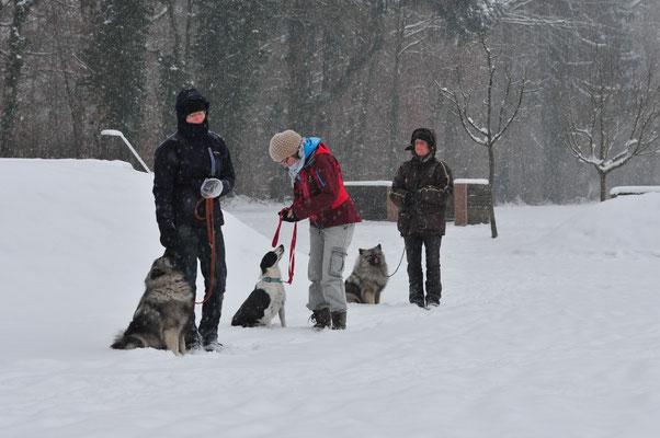 Sitz in der Gruppe (und im Schnee:-))