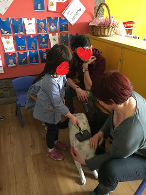 Avvicinamento al Cane con Scuola Materna
