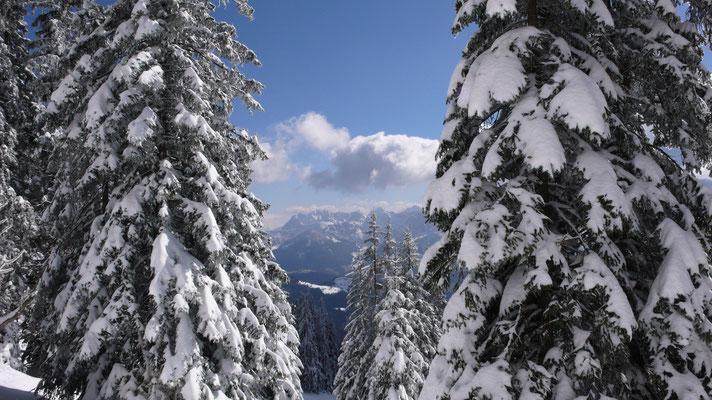 Durchblick zum Kaisergebirge