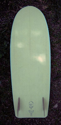 Scott's Paddle Pop 4'11""