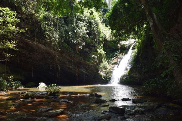 Der Wasserfall und die Lianenschaukeln von Womé