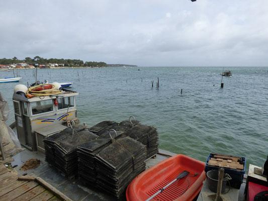 Madinina à quai l'hiver, retour des parcs, le chaland chargé de poches de petites huîtres à trier