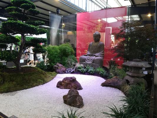 Bonsai Ausstellung im Fruchtschuppen