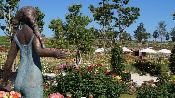 Das Käthchen im duftenden Rosengarten