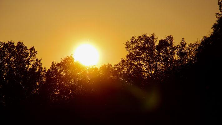 39 Sonnenaufgang