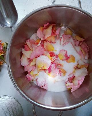 Roseblütensirup