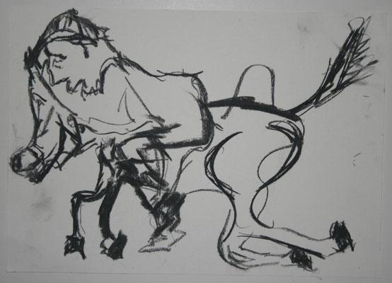 Reiterpferd