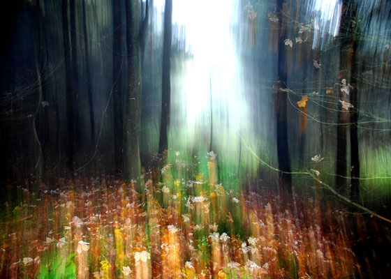 Foto: Andreas Ender, photo-art+painting | Portal - Edition of 99 - 70x50cm | 144,00€ each
