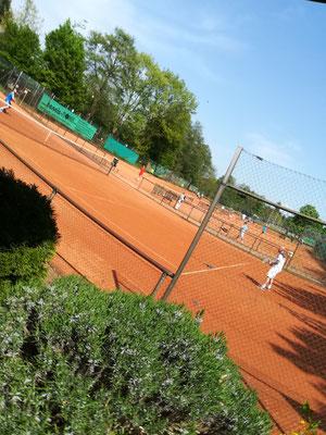 92 Tennisspieler in 4 Konkurrenzen an 5 Tagen bei fantastischem Wetter