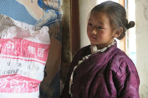 Petite Tibetaine