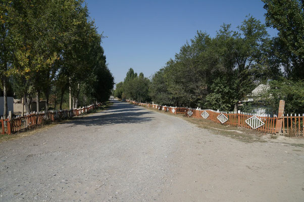 Rue principale de Jangi Talap. Les barrières rouges et blanches sont caractéristiques des village de la région