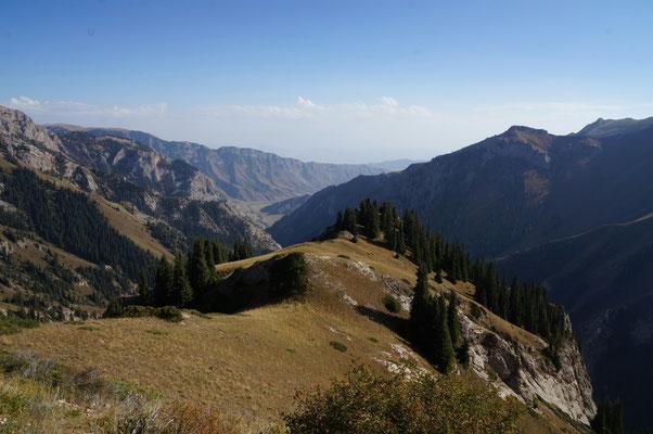 De l'autre côté du col, les prairies verdoyantes laissent la place aux montagnes rocheuses et aux conifères