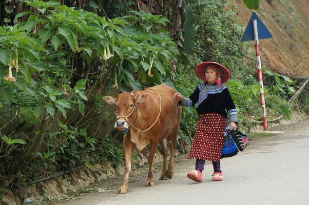 Femme Hmong en route vers le marché de Can Cau