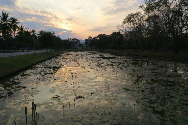 Coucher de soleil sur les bassins de sukhothai