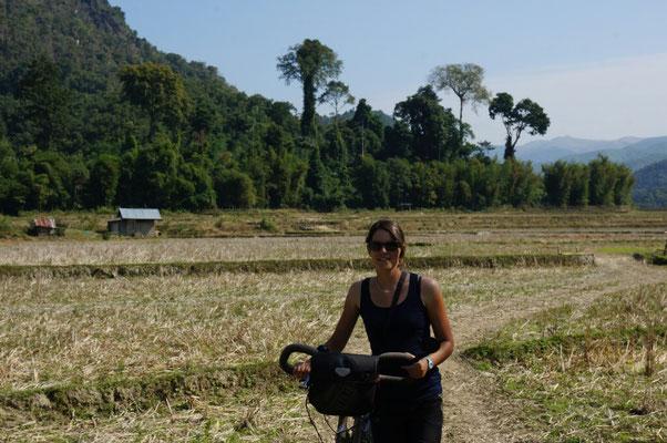 Petite balade a velo dans les rizieres aux alentours de Muang Ngoi