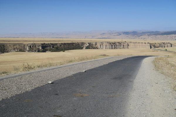 Les pépites de tournesol sèchent sur la route au soleil