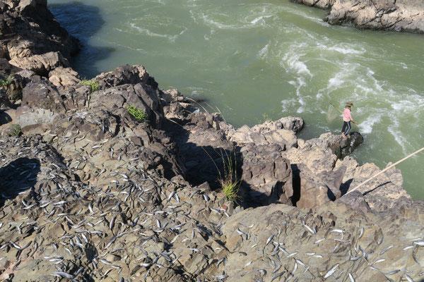Pêcheurs à l'aval des cascades