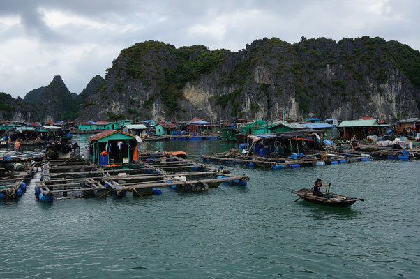 Village de pêcheurs flottant dans la baie de Lan Ha