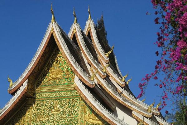 Voici un petit apercu de ce qui nous attend a Luang Prabang