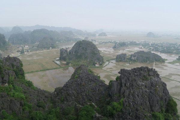 Point de vue sur les rizières en eau