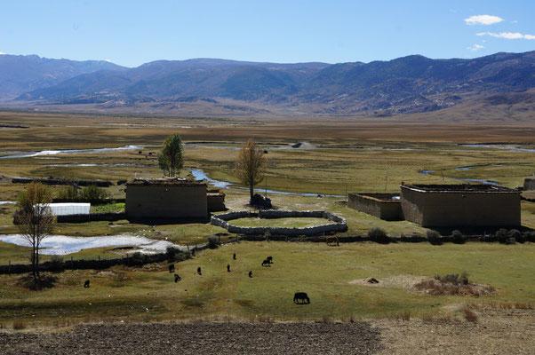 Ferme Tibétaine un peu après Litang