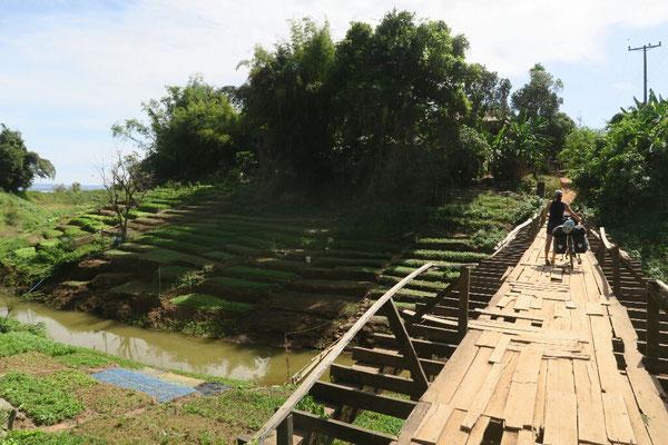 Sur la rive droite du mekong, des nombreux points en bois, plus ou moins bien entretenus...