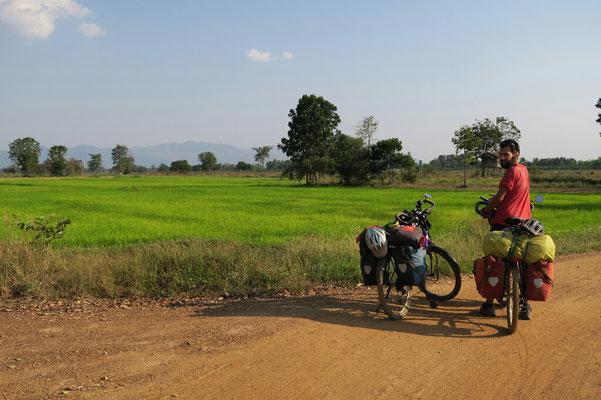En quittant Sukhothai, on retrouve les rizières