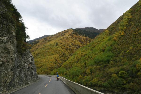 Vallée de Yalong avec les belles couleurs d'automne
