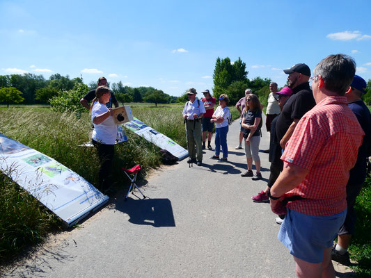 Ilka von der Eulen AG gibt Infos zur Streuobstwiese und dem Steinkauz