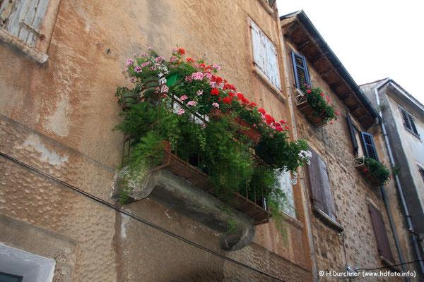 Blumenkasten in Rovinj