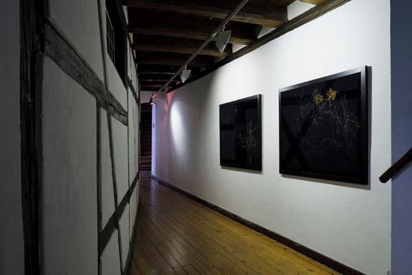 Room 6. Yukara Shimizu