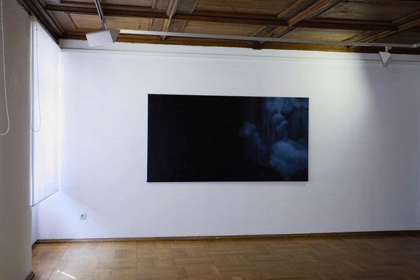 Raum 3. Anne Pincus