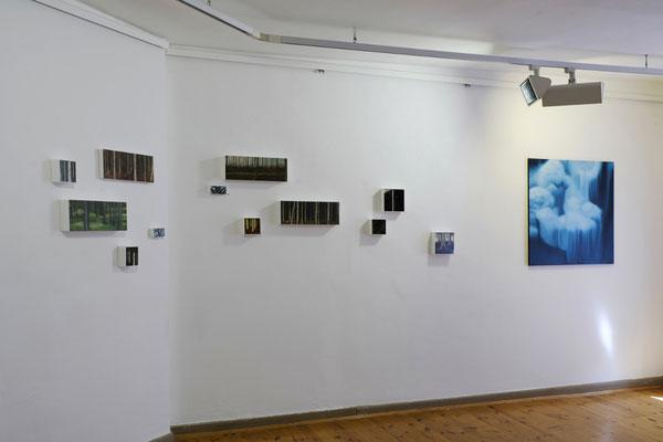 Raum 5. Anne Pincus