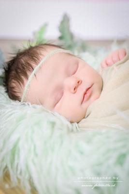 Newborn Foto Shooting Bern