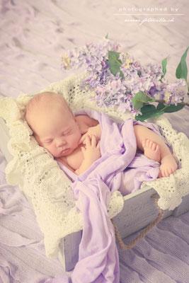 Newborn Baby Foto Shooting Bern