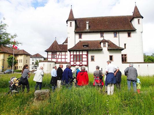 Schlosswiese