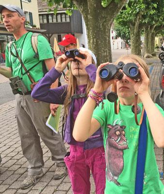 Kinder beobachten Schwalben und Segler