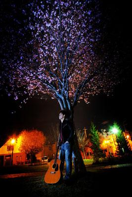 夜桜にて佇む 妖