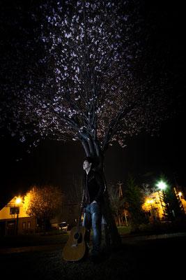 夜桜にて佇む