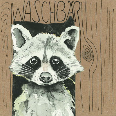 Waschbär_Postkarte, Grußkarte, Aquarellzeichnung © Britta Jessen