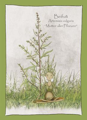 Kräuterkarte_Beifuß_Artemesia vulgaris © Britta Jessen