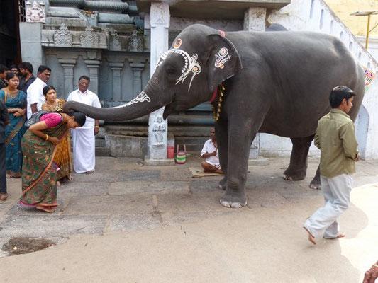 temple de Kanchipuram