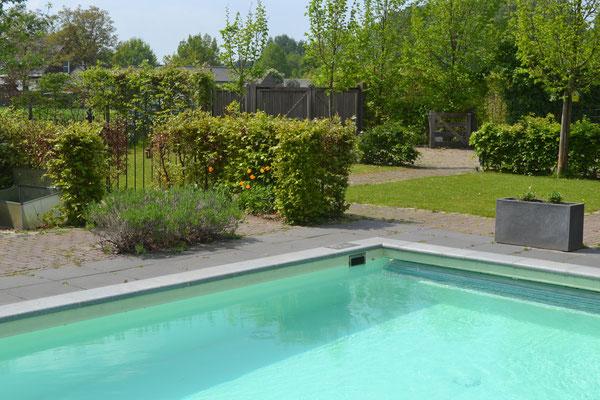 Vakantiehuis en zwembad b b het steenuiltje sint oedenrode for Zwembad s hertogenbosch