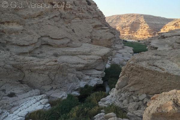 Wadi Ayun