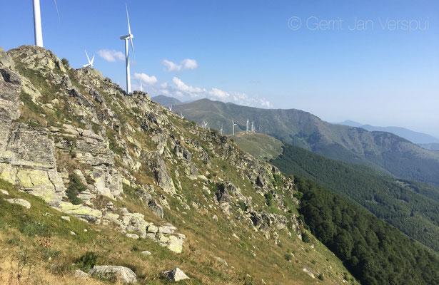 Around 2000 m absl