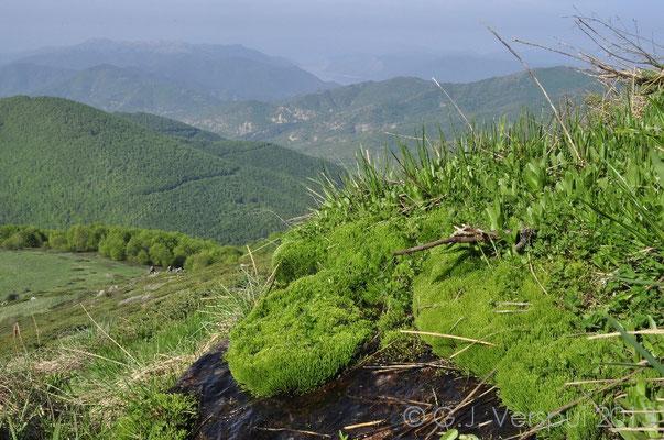 Mountains close to the Prespa Lakes.