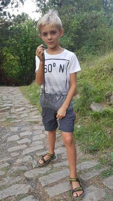Siem with Anguis graeca