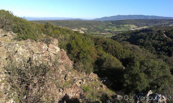 Monte Arci, habitat of European Leaf-toed Gecko