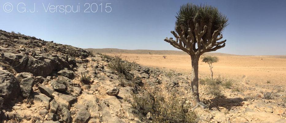 Samhan plateau